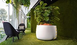 Stitch Plant Pot Collection Blinde Design Plant Pot Idea