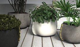 Outdoor Setting Plant Pot Collection Blinde Design Plant Pot Idea